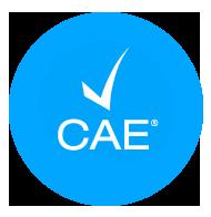 cae2020-2